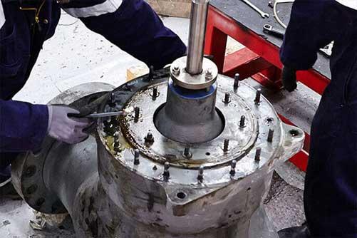 safety valve servicing
